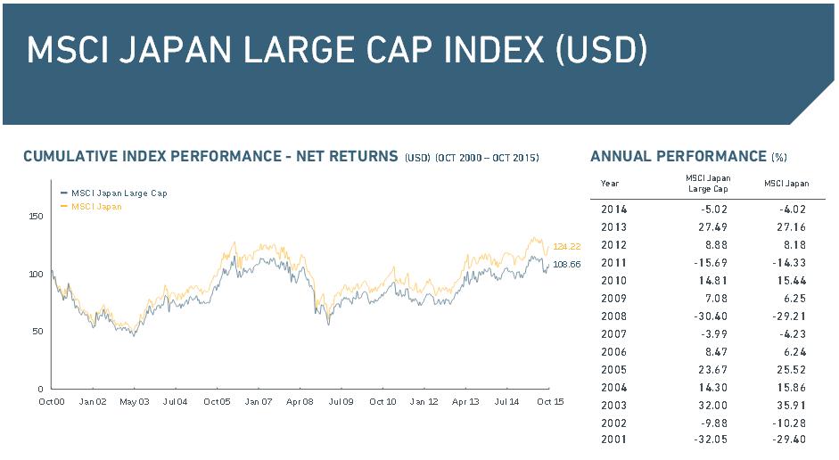 Der MSCI Large Cap Index im Überblick