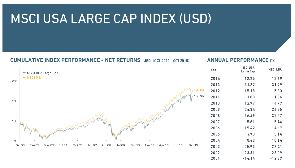 MSCI USA Large Cap Index in der Übersicht